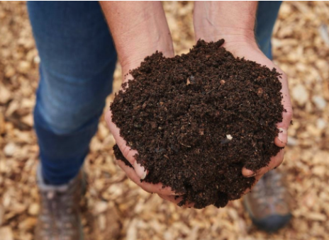 Compost and climate change