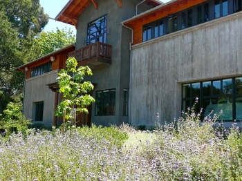 Shasta Hills Fire Station, Berkeley - A Bay-Friendly Rated Landscape