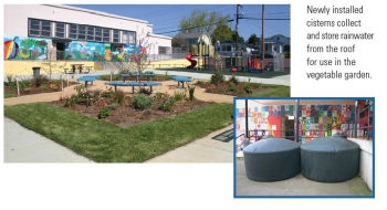 Sequoia Elementary School - Bay-Friendly Garden