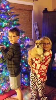 Holiday Tree with Family