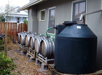 Harvesting rainwater and using graywater stopwaste for Home rainwater collection